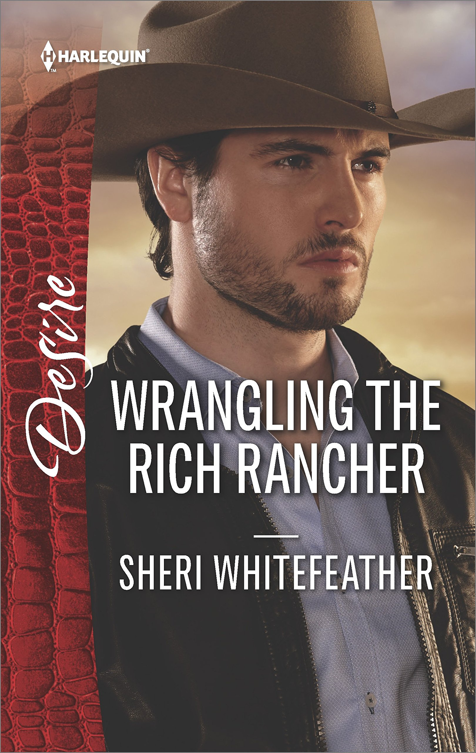 Wrangling The Rich Rancher Sons Of Country Product8